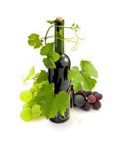 Veini valmistamise Retseptpakk 25 L